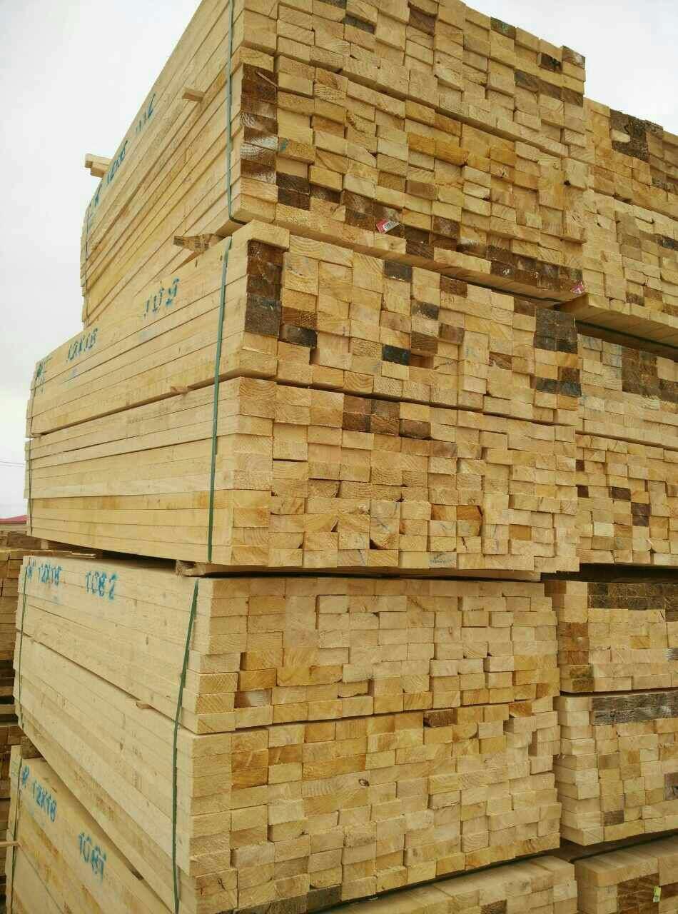 全球木材市场需求旺盛